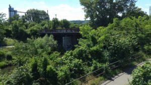 Mosty v zeleni